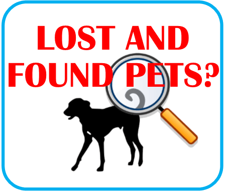 Lost and Found Pets Page