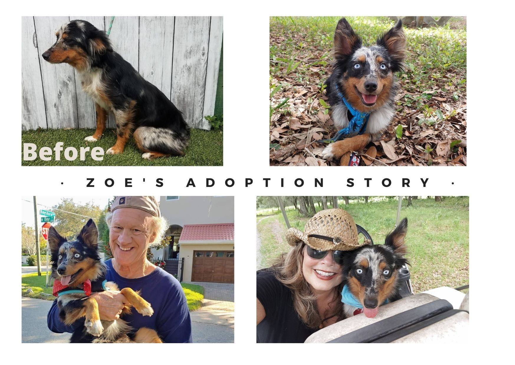 Zoe Adoption story pictures
